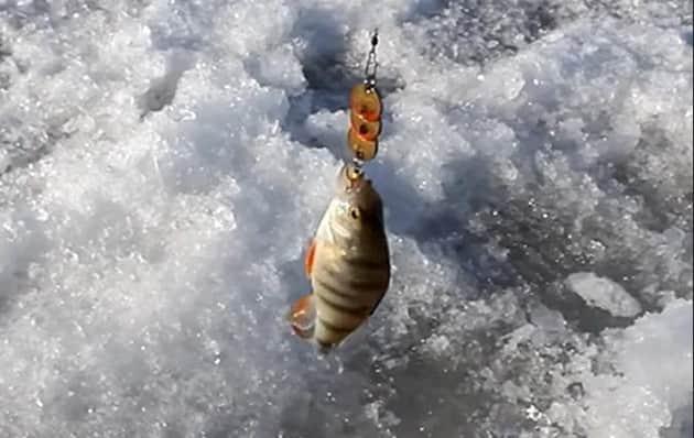 Самоделка для зимней рыбалки - блесна из монеток