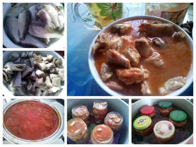 Как сделать рыбные консервы в домашних условиях из речной рыбы в томате