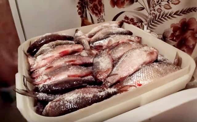Как солить рыбу в домашних и походных условиях