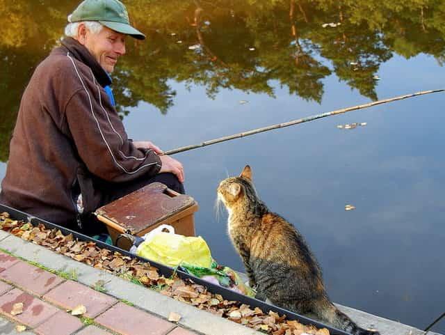 Хитрости от старого рыбака, которые помогут сделать летнюю рыбалку успешной и комфортной