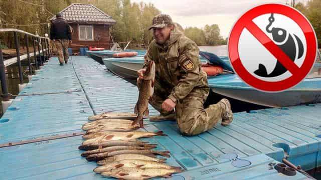 Нерестовый запрет в Москве и Московской области