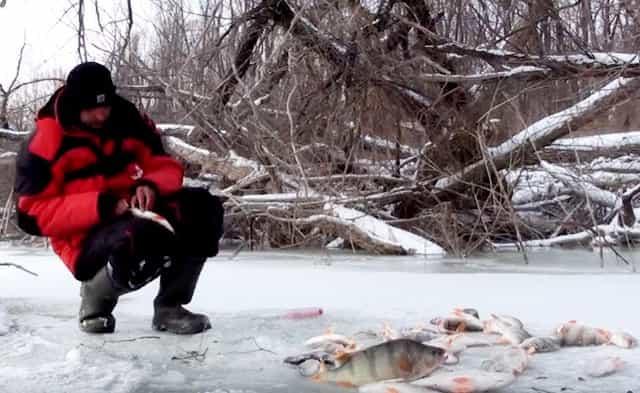 Рыбалка в феврале на окуня