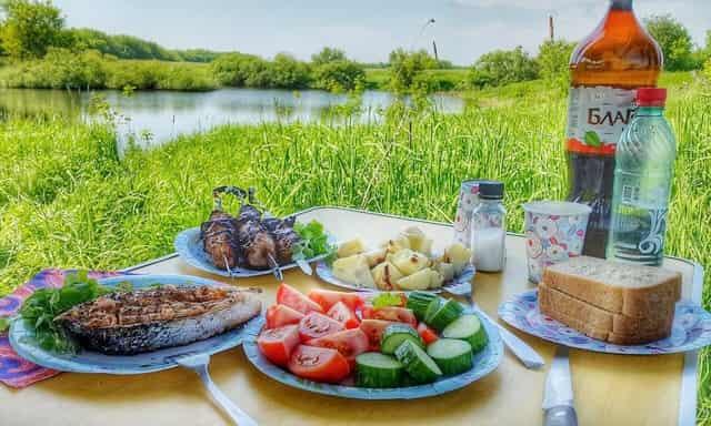 Можно ли жарить шашлыки на рыбалке у реки, на даче или в лесу?
