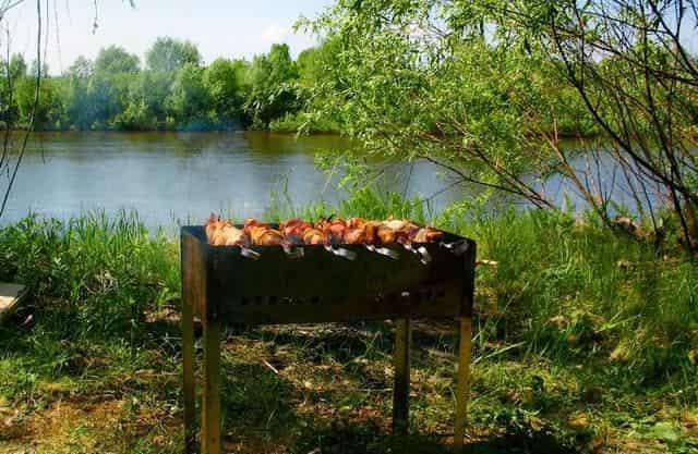 Штраф за шашлыки на даче в лесу на берегу реки