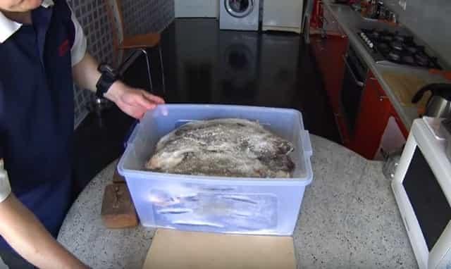 Засолка леща в домашних условиях