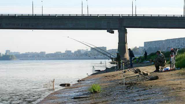 Какой штраф за ловлю рыбы на мосту