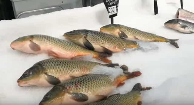 Как же отличить размороженную рыбу от охлаждённой