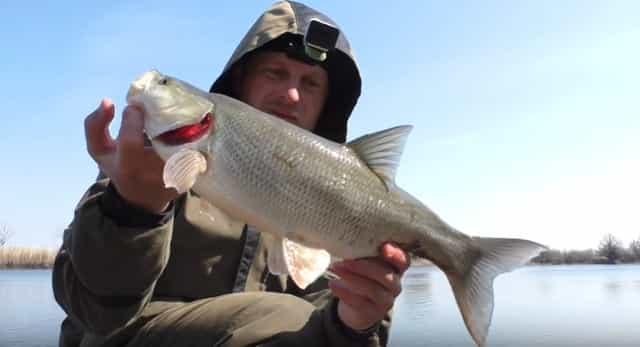 Правила идеальной рыбалки