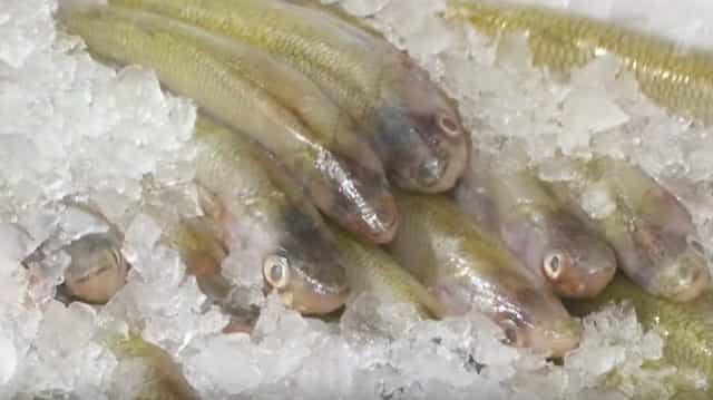 Какая рыба первой свежести, а какая второй