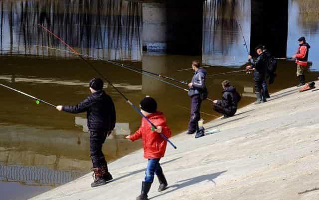 Рыбалка с моста и под мостом - штраф или можно