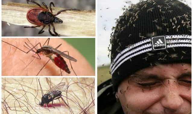 Средства от клещей, комаров и мошек