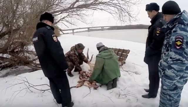 Кто такой браконьер в России