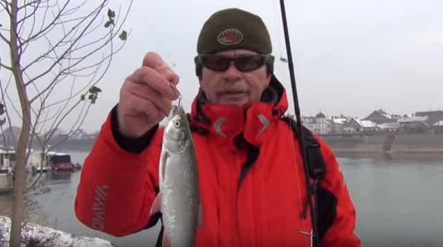 Налог на рыбалку - Кузьмин