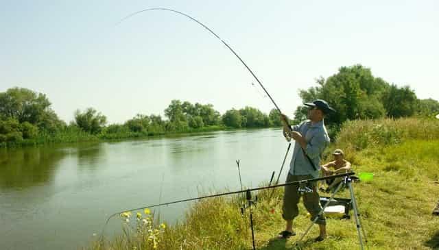 Новые нормы вывоза рыбы