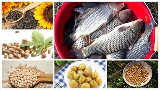 Уловистые насадки, наживки и прикормка для рыбалки