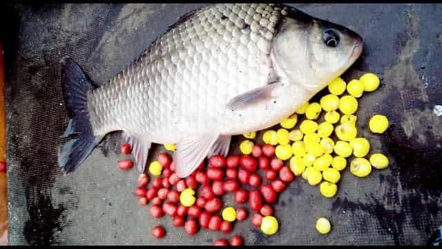 """Плавающая насадка """"Пуфик"""" для рыбалки"""