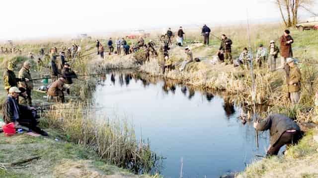 Почему рыбы стало меньше в реках - виноваты сами рыбаки - мешками ловят и мусорят