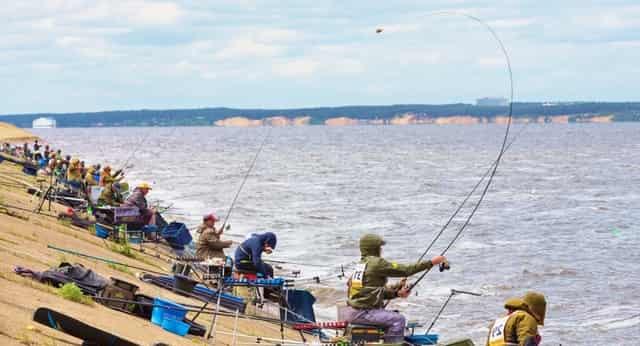 Полезные хитрые советы рыболовов-спортсменов