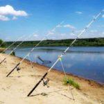 Наглый рыбак заставил весь берег удочками - Что же делать