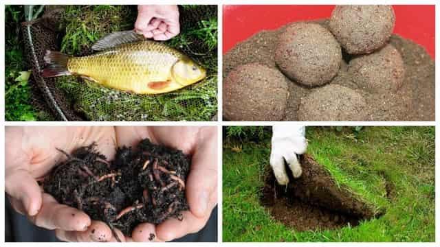 Черви и грунт - дедовская бюджетная приманка-прикормка для рыбалки