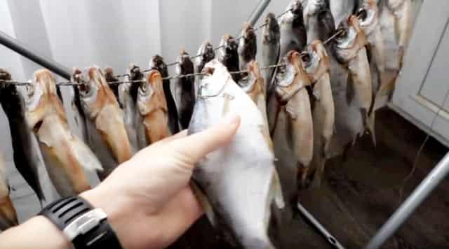 Как правильно вялить рыбу по ГОСТу