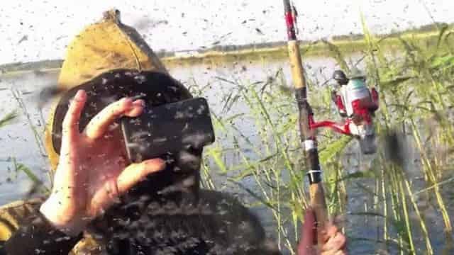 Как я спасаюсь и защищаюсь от комаров и мошек на рыбалке