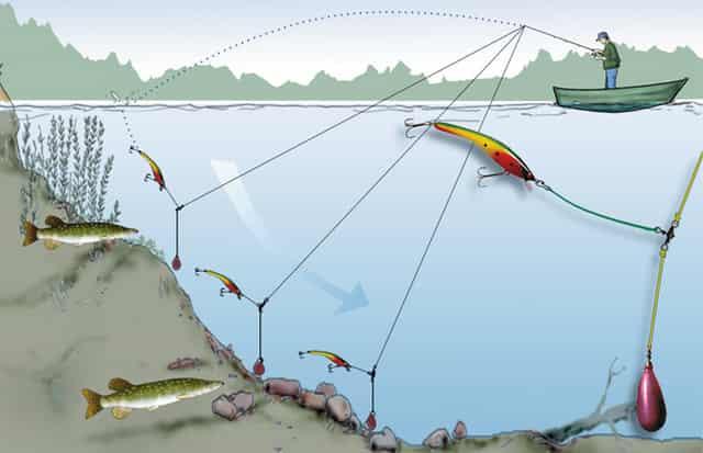 Виды проводок с отводным поводком