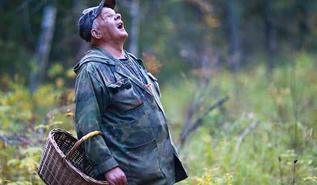 Как не заблудиться в лесу и выйти на своё место, зная всего лишь одну цифру