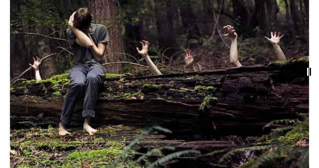 Не паникуйте в лесу, когда заблудились