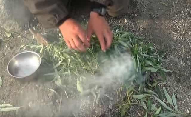 Укладываем рыбу с листьями на угли костра и коптим