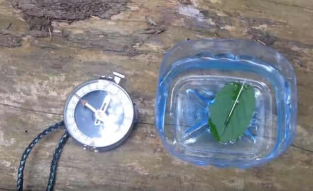 Простой самодельный компас из обычной иглы в лесу