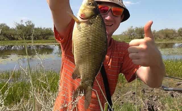 Случай на рыбалке, после которого я изменил своё мнение о карасях