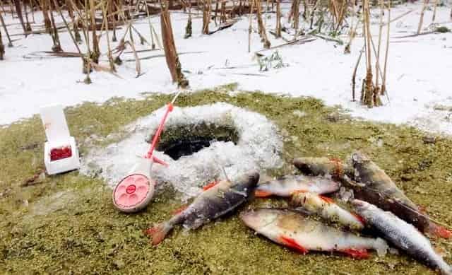 Как сохранить лунку на зимней рыбалке без замерзания