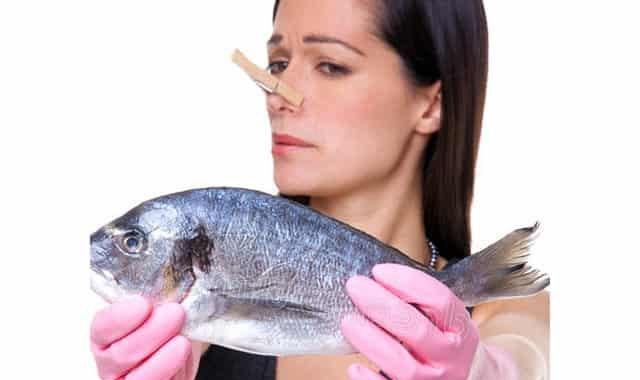 """Рыба из пруда """"воняет"""" тиной - деревенские хитрости как избавиться от запаха тины"""