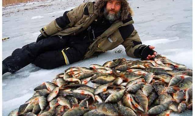 """Самодельная """"приспособа"""", которая предсказывает клёв, когда стоит идти на рыбалку"""