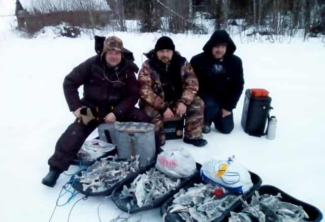 Зимняя рыбалка хапугой