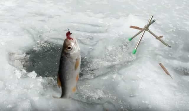 Ловить зимнюю рыбу на гидроперит
