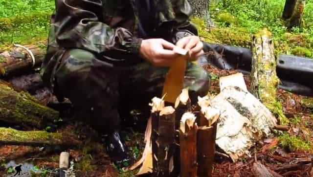 Костёр в сыром лесу