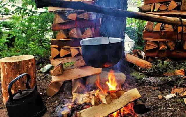 Заготовить дров в лесу для костра