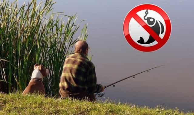 Новый штраф за рыбалку до 40 тысяч руб по статье 6.3 КоАП РФ часть 2